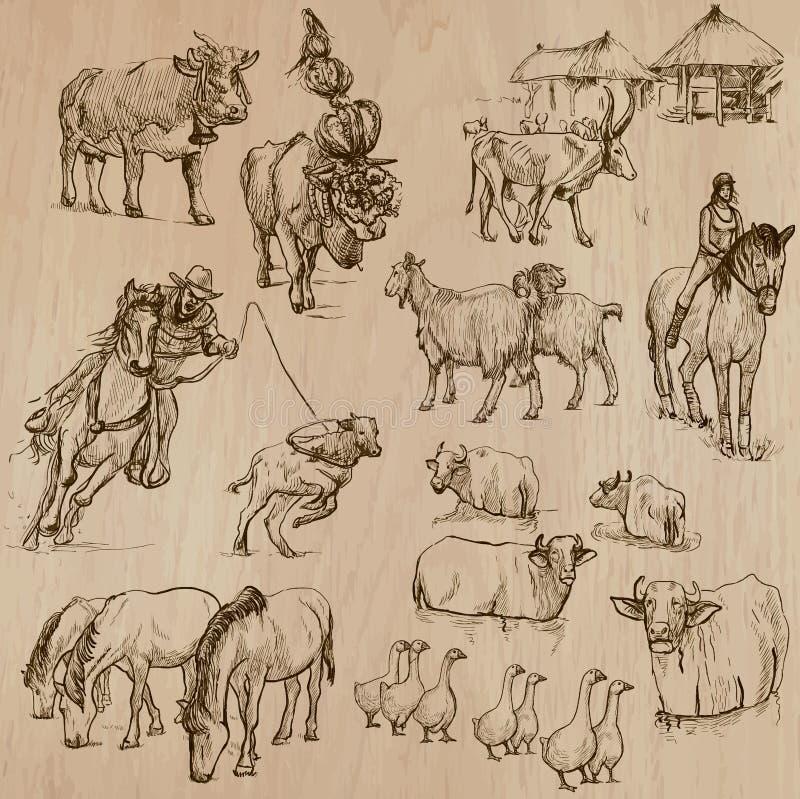Animales del campo Paquete dibujado mano del vector stock de ilustración
