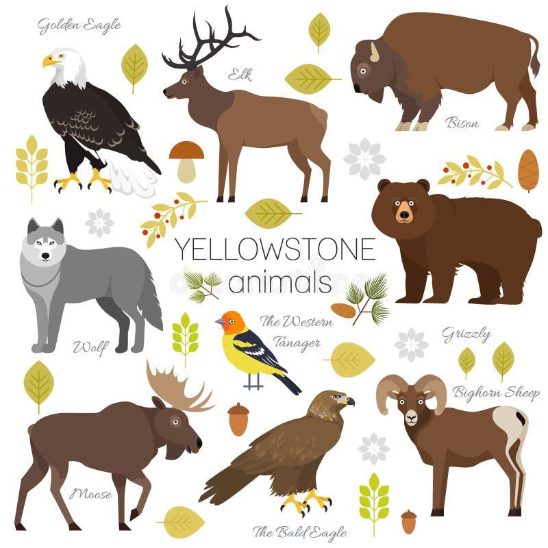 Animales del parque nacional de Yellowstone fijados libre illustration
