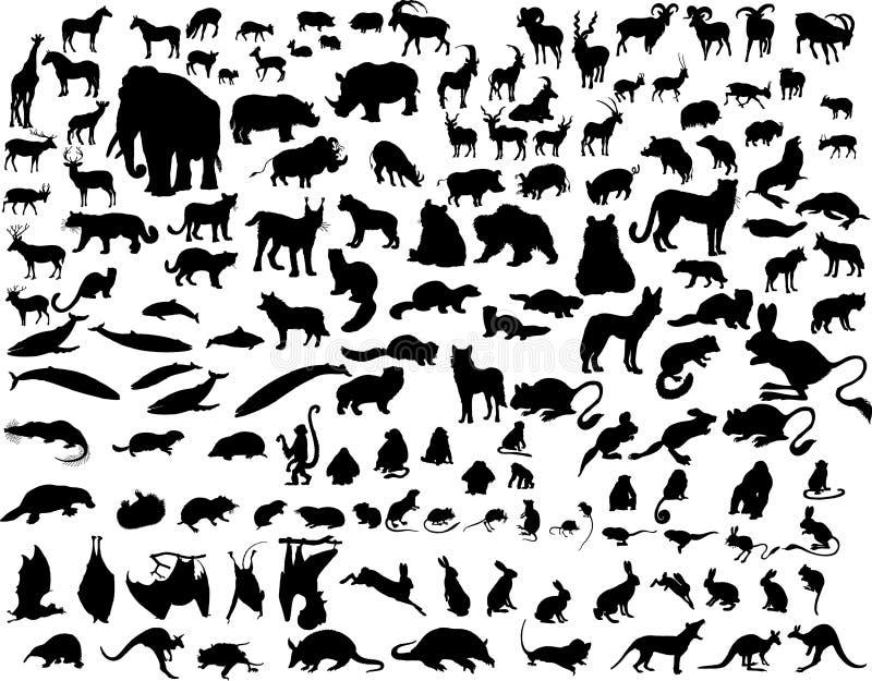 Animales del vector stock de ilustración