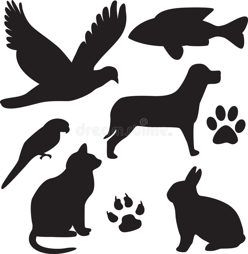 Animales domésticos domésticos libre illustration