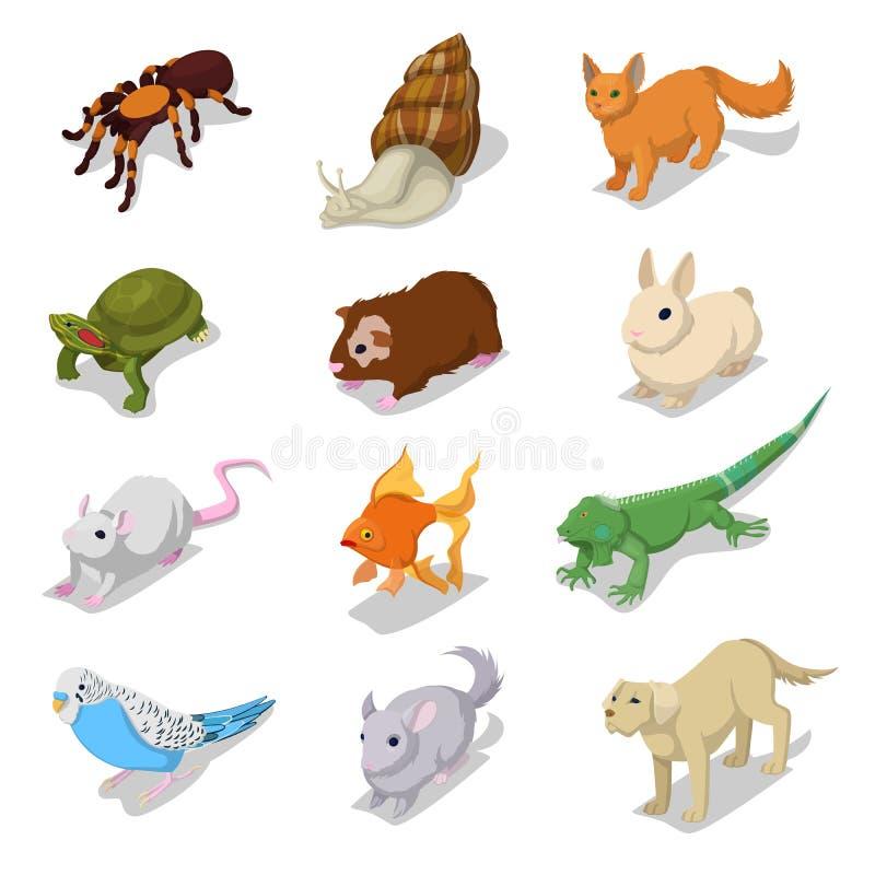 Animales domésticos isométricos de los animales domésticos con el gato, el perro, el hámster y el conejo libre illustration