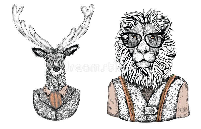 Animales elegantes de la historieta vestidos en ropa de la moda libre illustration