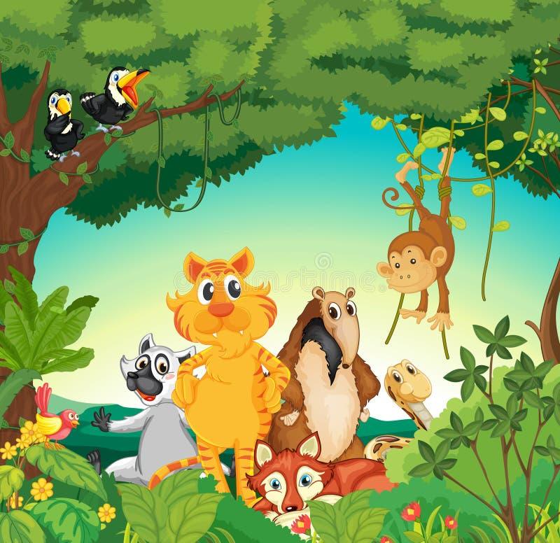 Animales en el bosque stock de ilustración