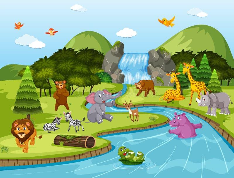 Animales en escena de la cascada ilustración del vector