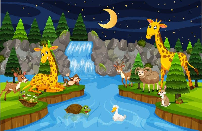 Animales en la escena de la noche de la cascada stock de ilustración