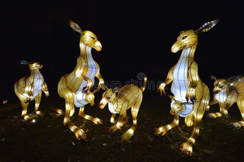 Animales en la noche del Jardin des Plantes foto de archivo libre de regalías