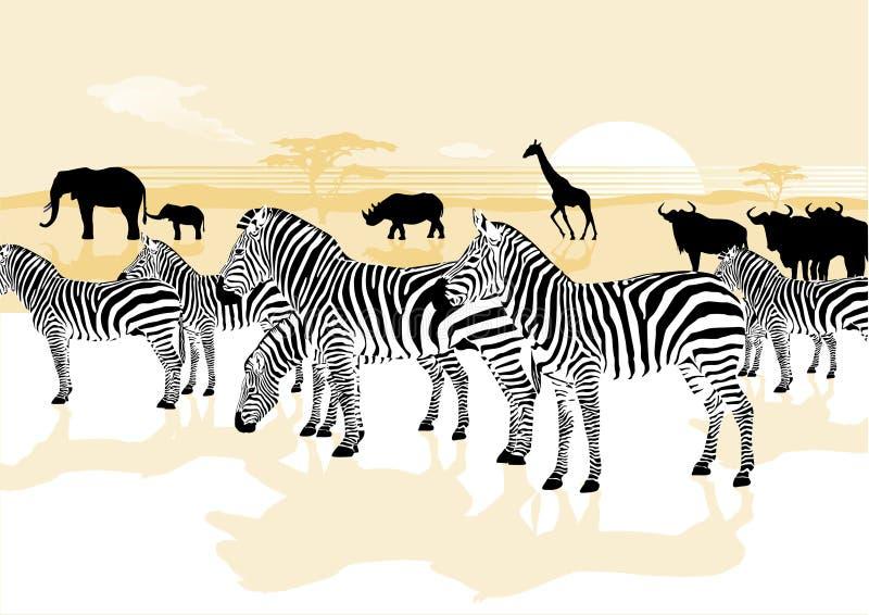 Animales en la sabana stock de ilustración