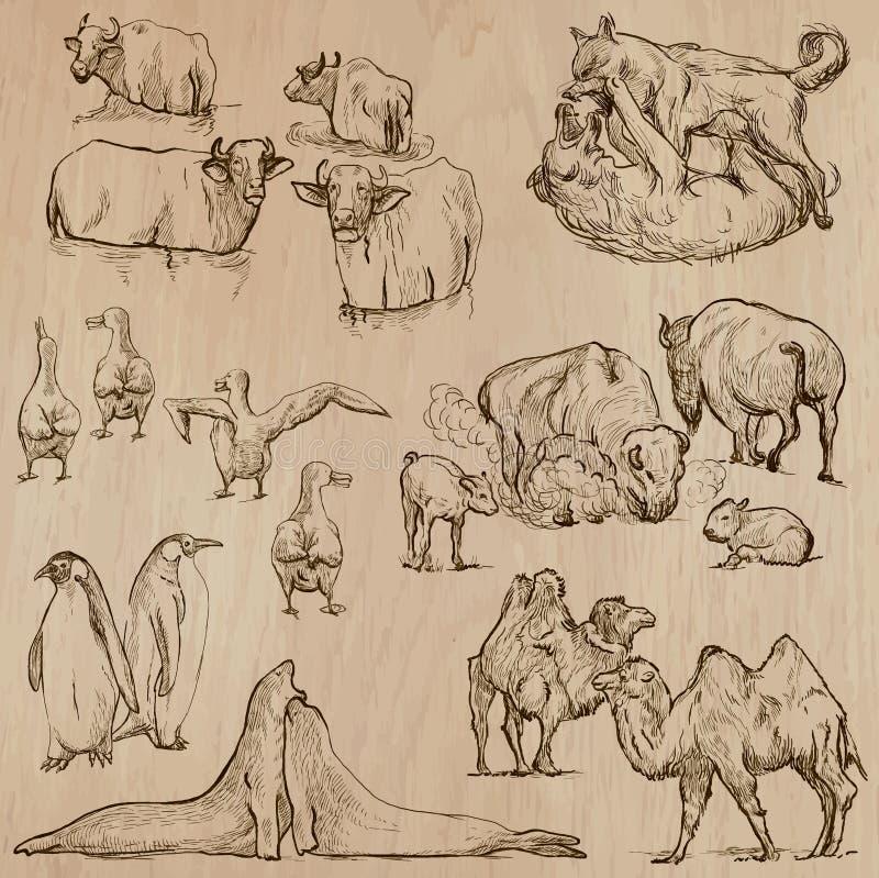 Animales en todo el mundo (parte 20) Paquete dibujado mano del vector libre illustration