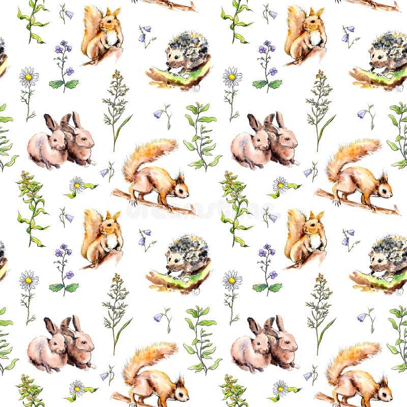 Animales forestales: conejos, zorro, ardilla, erizo en hierba y flores. Patrón transparente. Color de agua libre illustration