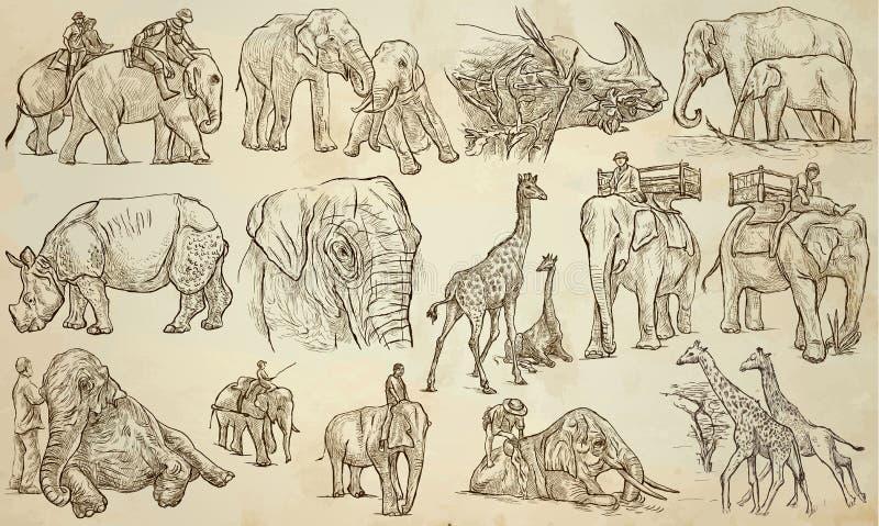 ANIMALES GRANDES y PESADOS - un paquete dibujado mano del vector, línea arte stock de ilustración