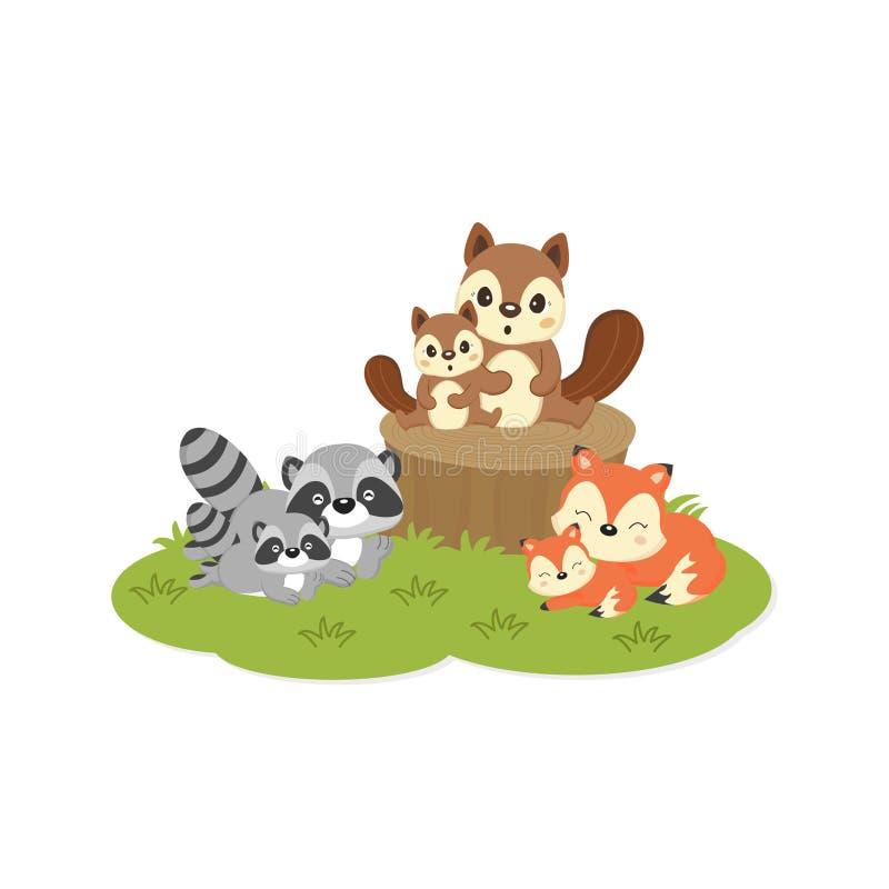 Animales lindos del arbolado de la familia Zorros, mapaches, historieta de las ardillas ilustración del vector