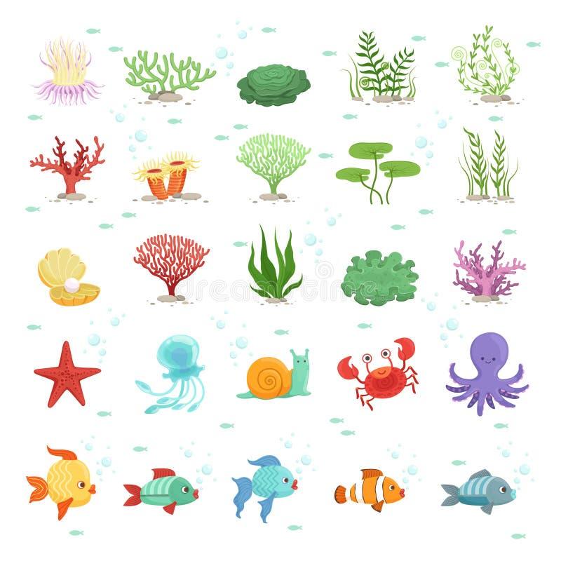 Animales marinos, colección de los pescados y plantas subacuáticas Fauna salvaje de la aguamarina Ilustración del vector ilustración del vector