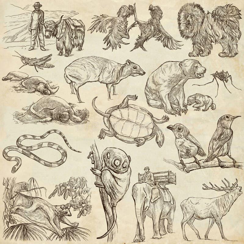 Animales - a pulso bosquejando, paquete ilustración del vector