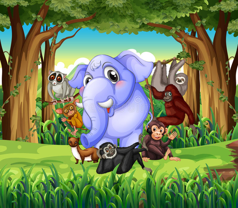 Animales salvajes en la selva libre illustration