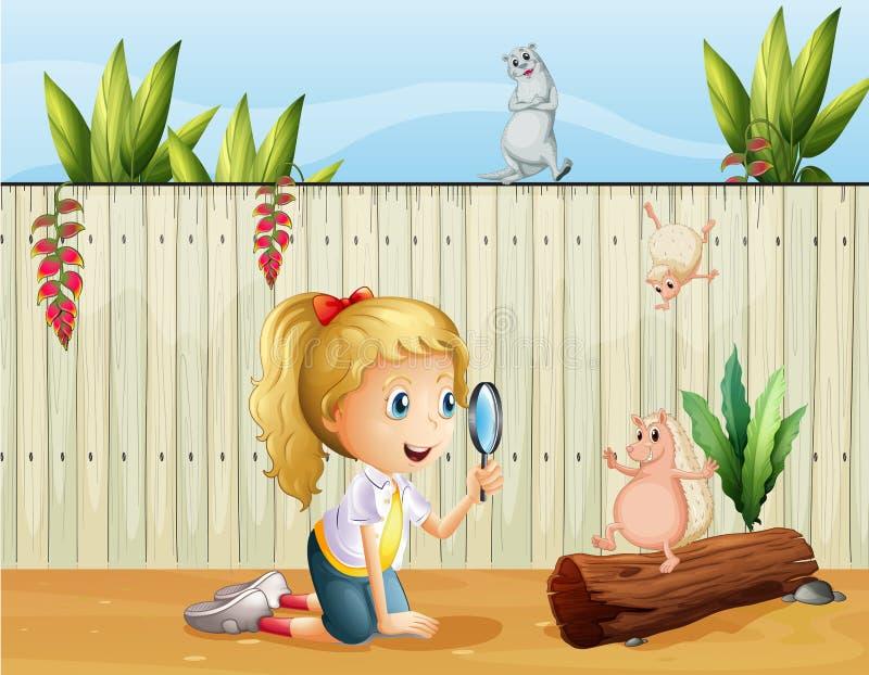 Animales salvajes y una muchacha con una lupa stock de ilustración