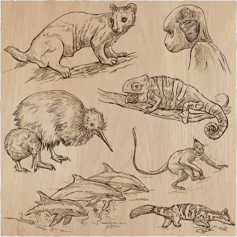 Animales - un paquete dibujado mano del vector, colección ilustración del vector