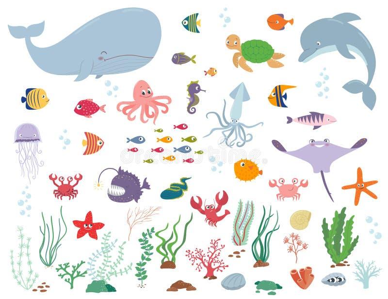 Animales y plantas de agua de mar Ilustración del vector de la historieta libre illustration