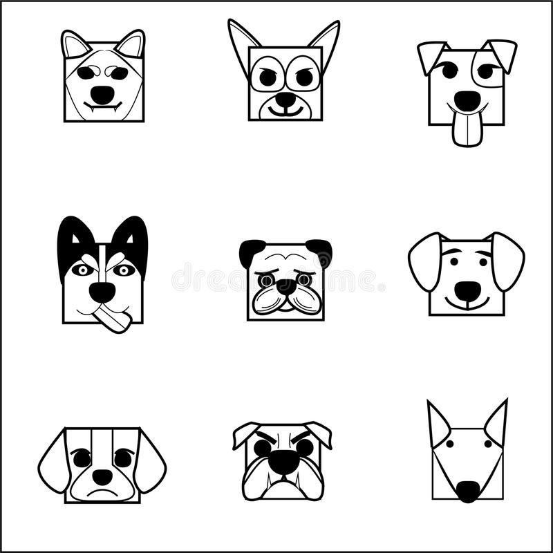 AnimalFaceBox02_Dog_session fotos de archivo libres de regalías