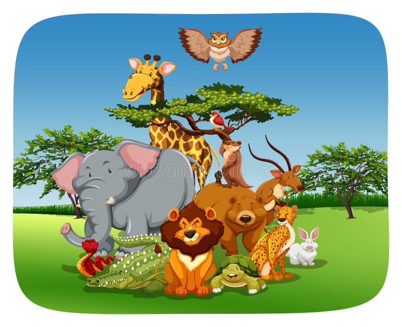 Download Animali illustrazione vettoriale. Illustrazione di creatura - 55365572