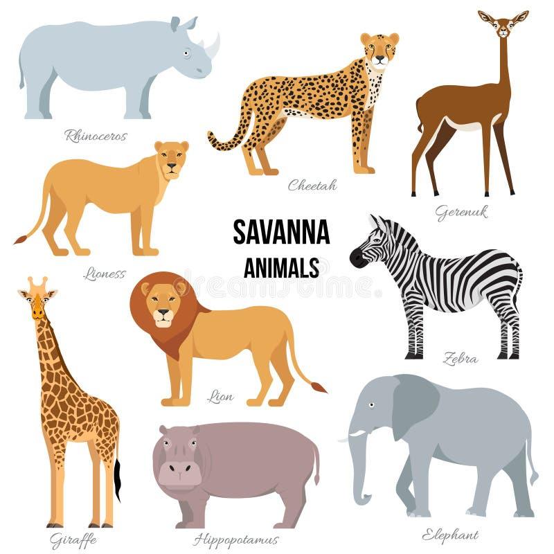 Animali africani dell'elefante della savanna, rinoceronte, giraffa, ghepardo, zebra, leone, ippopotamo Illustrazione di vettore royalty illustrazione gratis