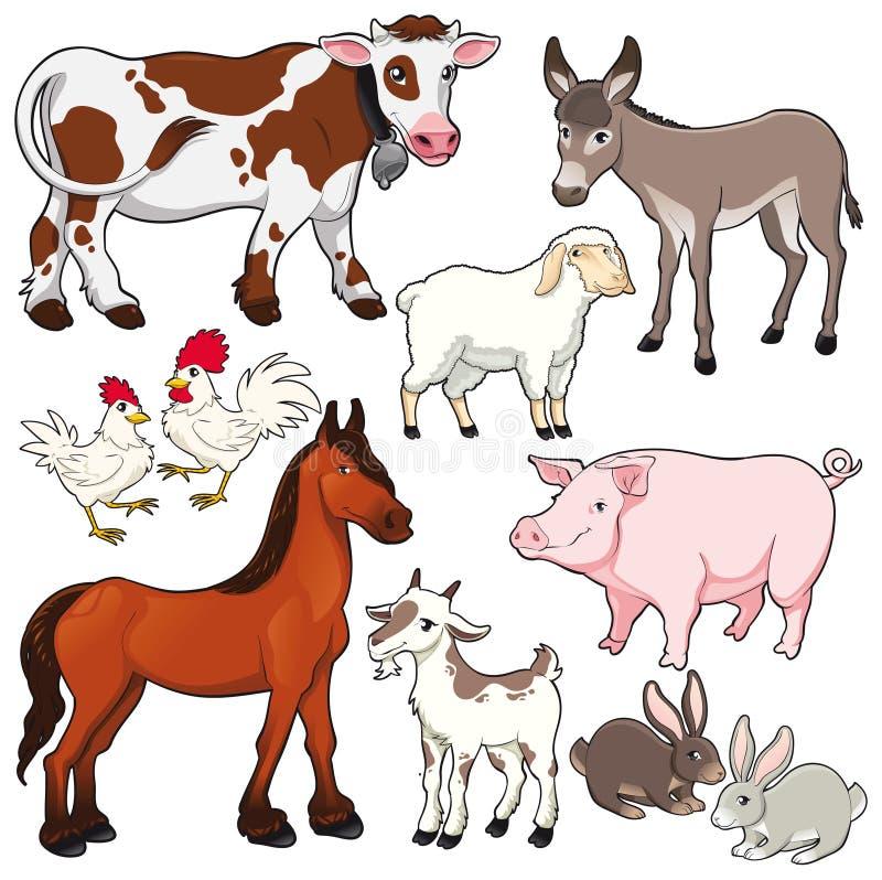 Animali da allevamento.