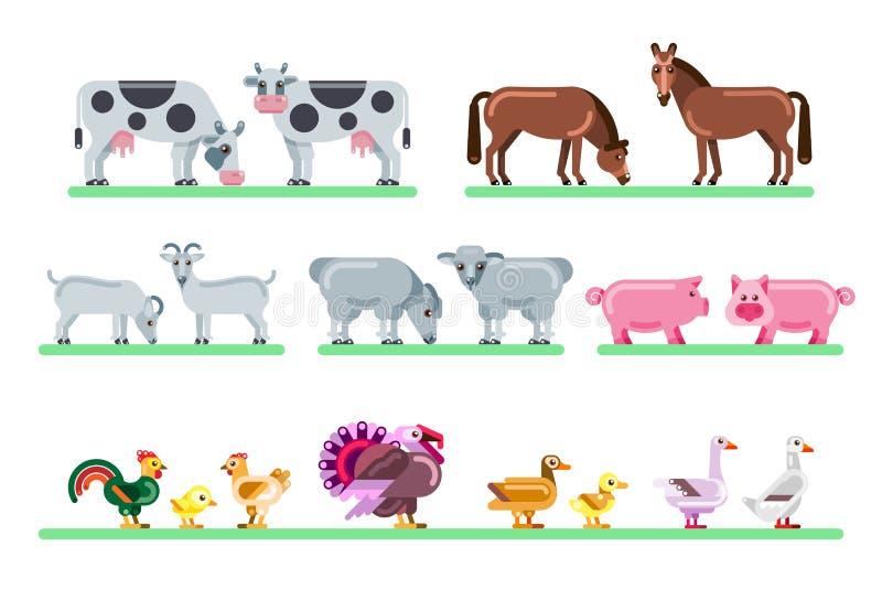 Animali da allevamento impostati Illustrazione piana di vettore del cortile Caratteri variopinti svegli isolati su fondo bianco illustrazione vettoriale