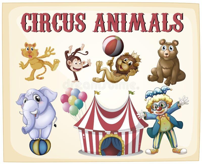 Animali da circo illustrazione vettoriale