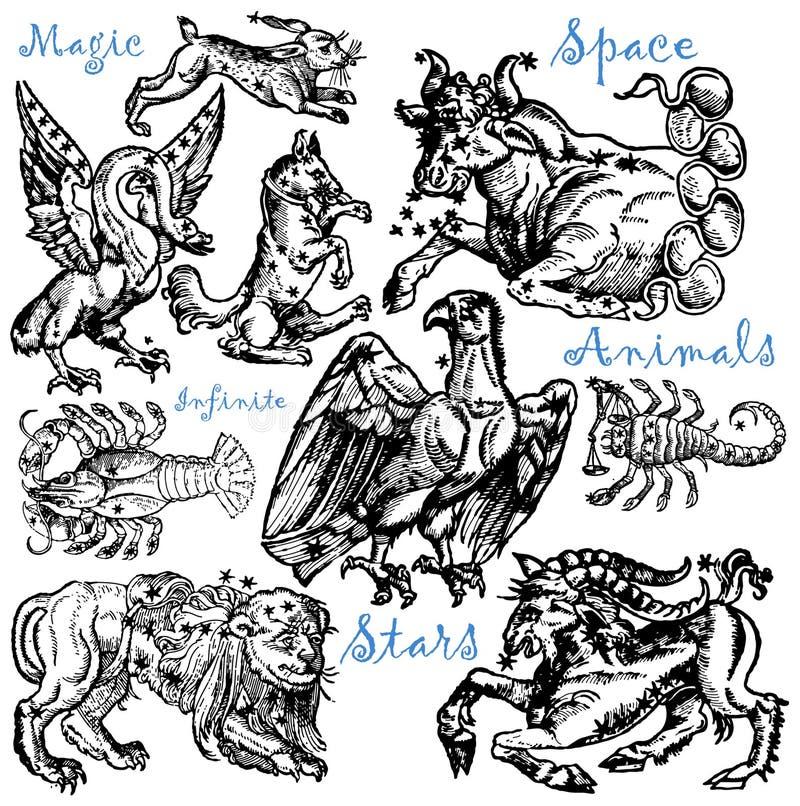 Animali dello spazio royalty illustrazione gratis