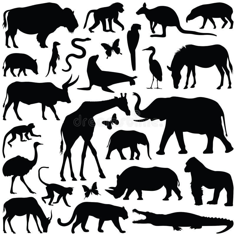 Animali dello zoo royalty illustrazione gratis