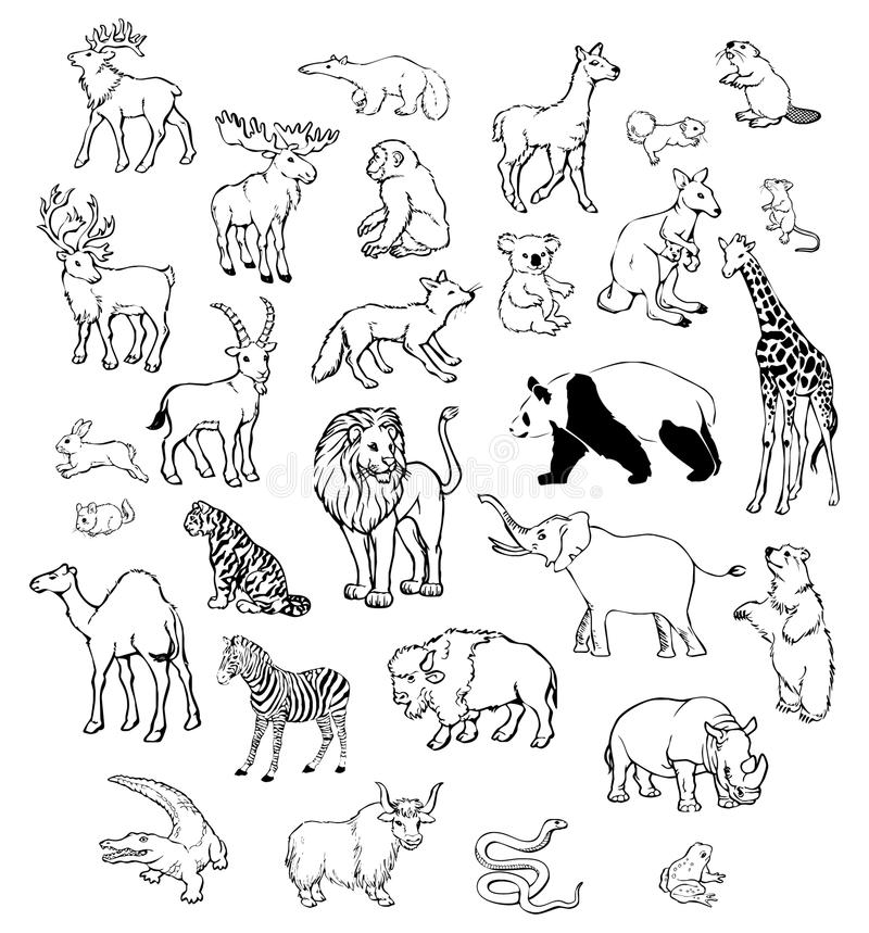 Animali di vettore illustrazione di stock