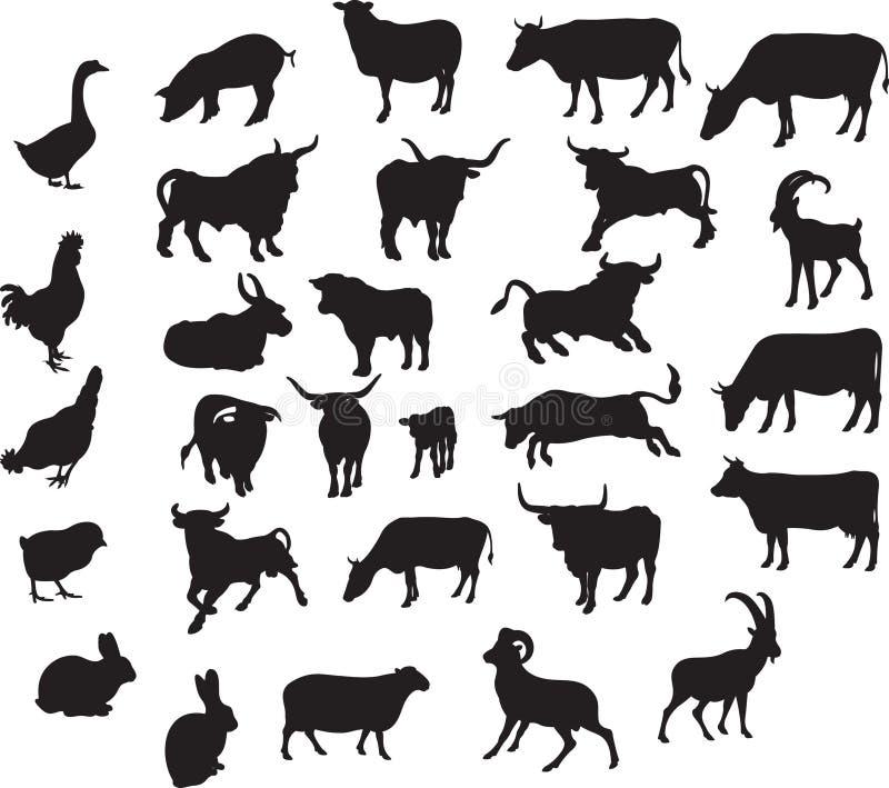 Animali impostati illustrazione vettoriale