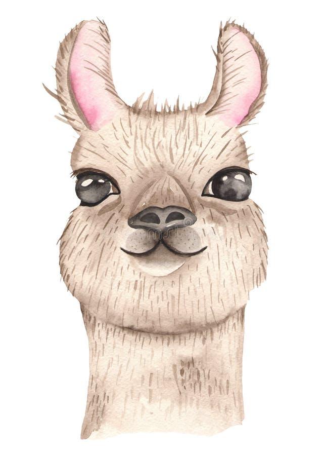 Animali messicani del fumetto sveglio dell'acquerello Ritratto con d'avanguardia tropicale illustrazione di stock