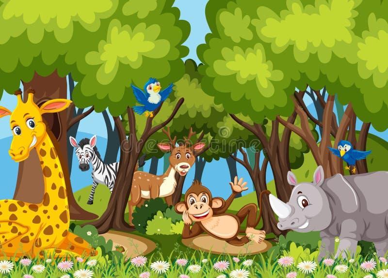 Animali nella giungla illustrazione di stock