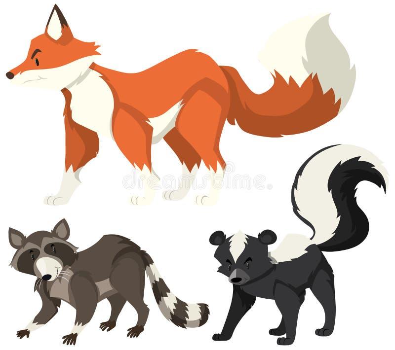 Animali selvatici differenti su fondo bianco royalty illustrazione gratis
