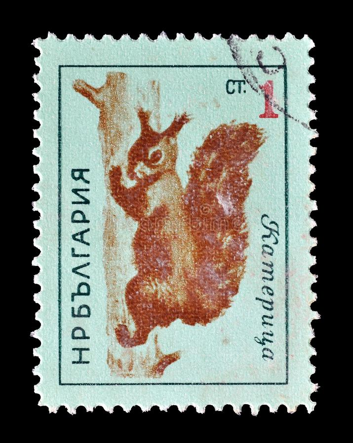 Animali selvatici sui francobolli immagine stock libera da diritti