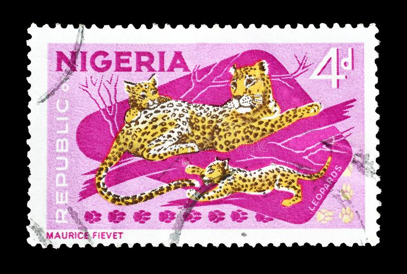 Animali selvatici sui francobolli immagini stock