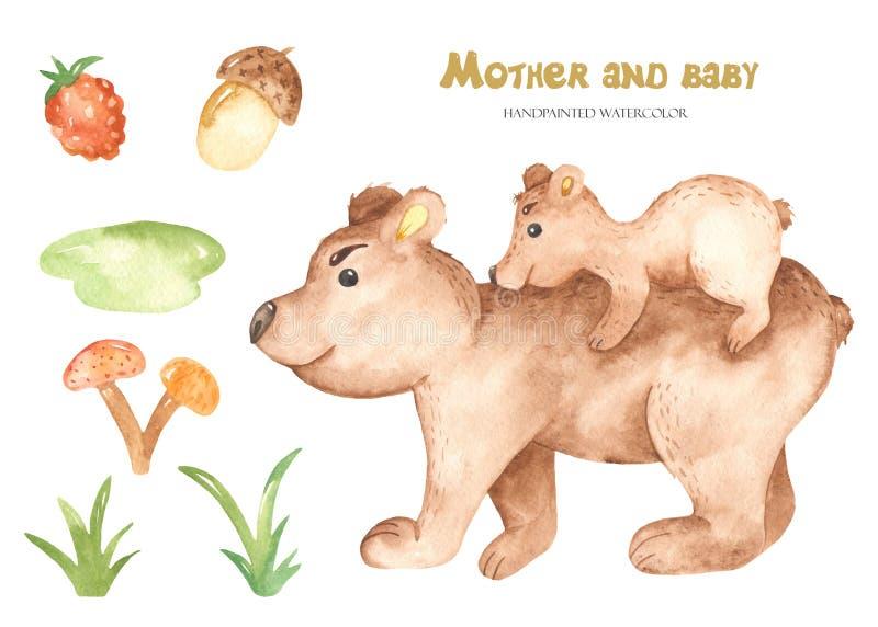 Animali svegli dell'orso della madre e del bambino dell'acquerello illustrazione di stock