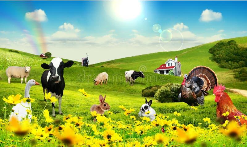 Animali in villaggio illustrazione vettoriale