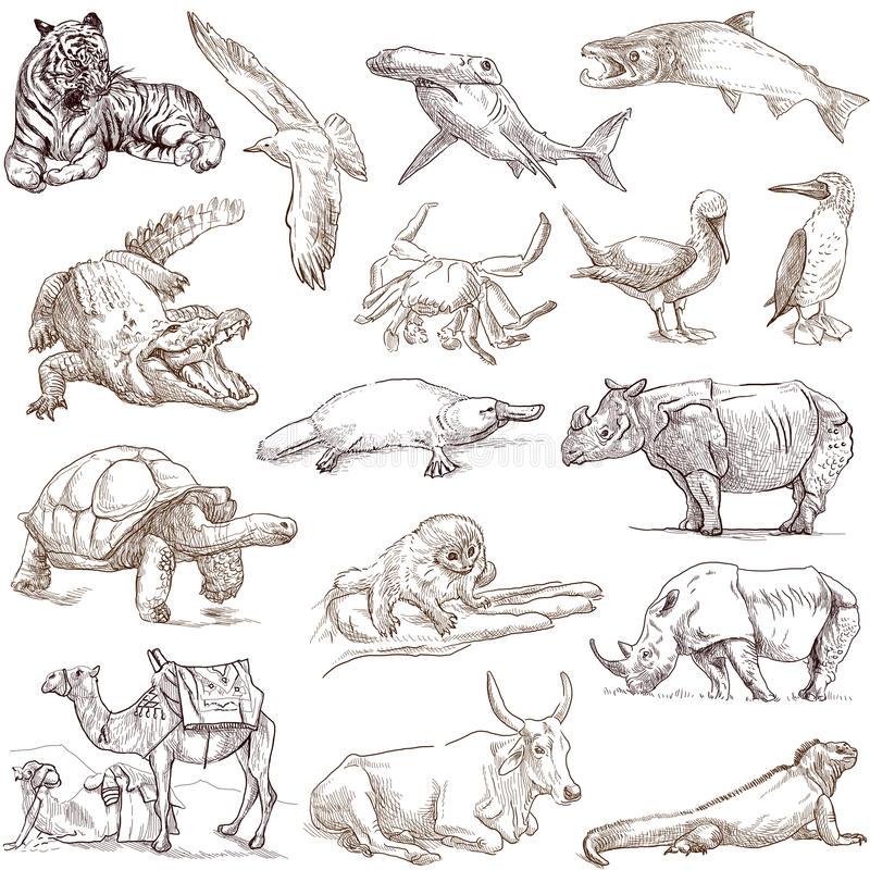 Free Animals 3 Royalty Free Stock Image - 32752756