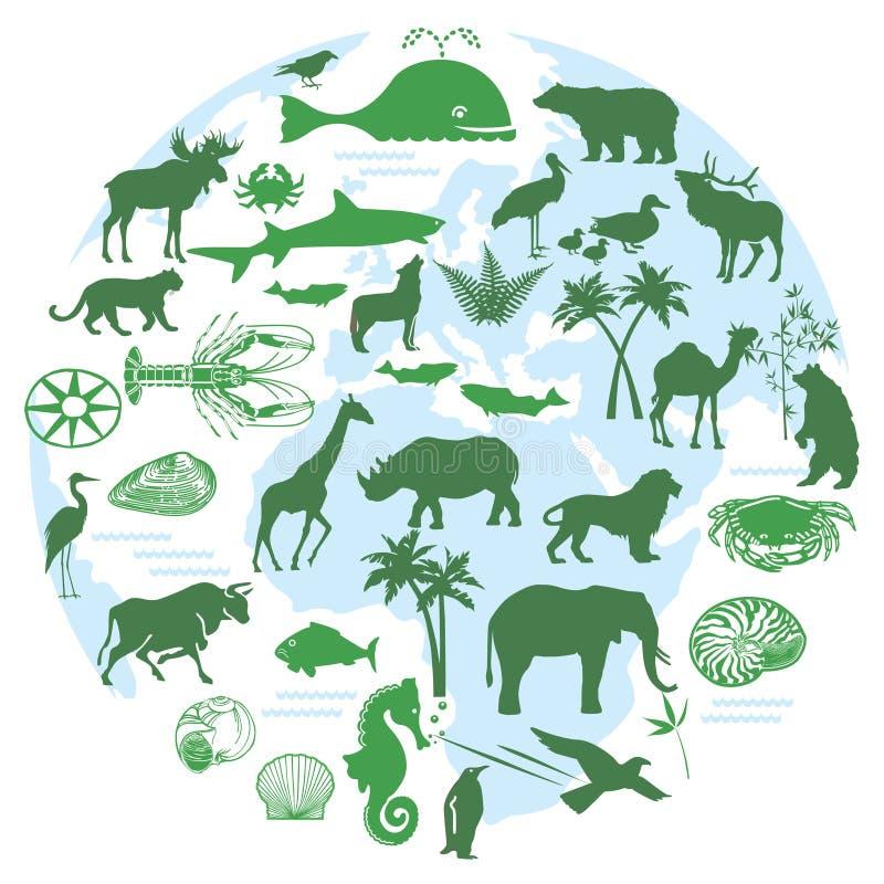 Animals and biodiversity. Illustration of different animals and biosystems stock illustration