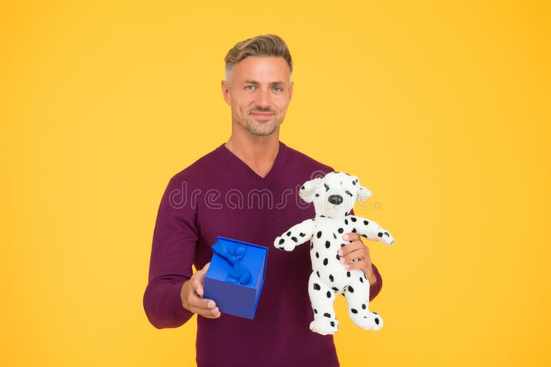 Animals care concept. Traditional holidays. Nice gift. From sincere heart. Man celebrate valentines day. Romantic gift. Mature guy gift box yellow background stock photos