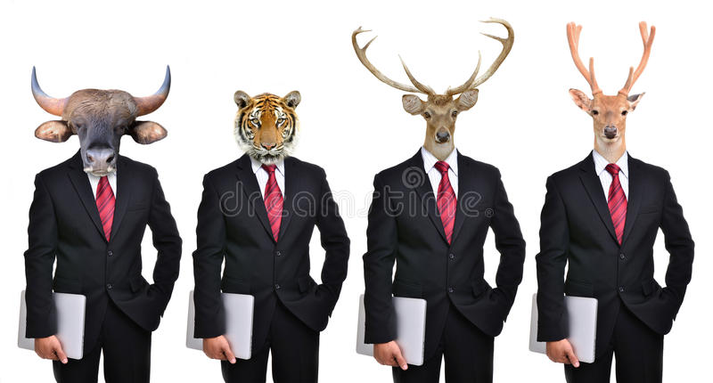 Animals dressed up as formal business man royalty free stock photo