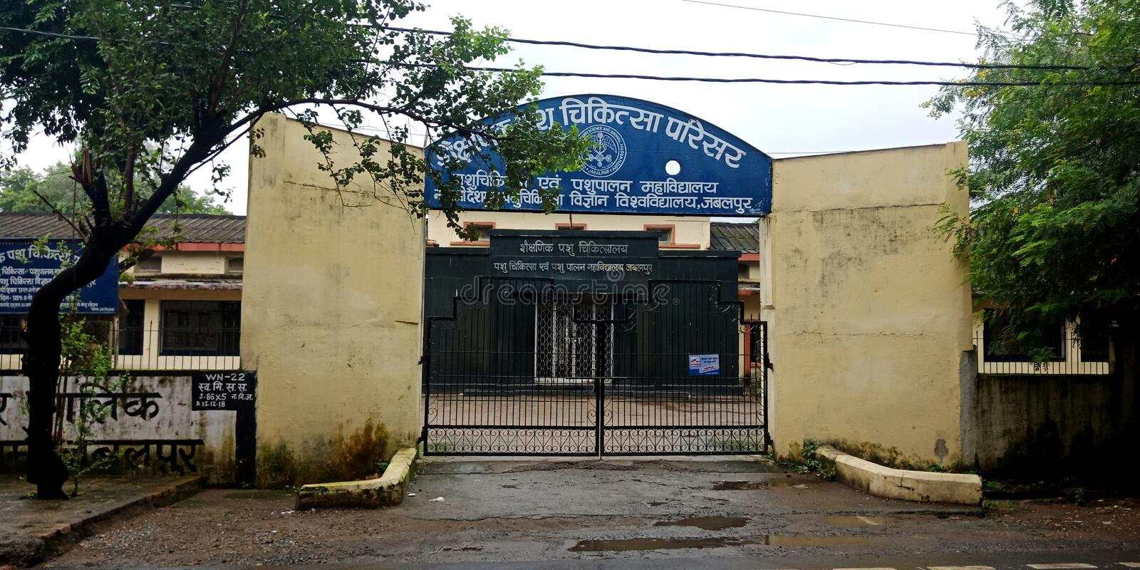 Animals health care center district jabalpur in India. Lal, nehru, indian, government, hospital, entrance, gate, lab, technician, girl, ing, samples royalty free stock photos