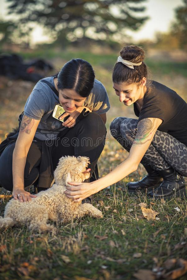 Animals and people, having fun in the park stock photo