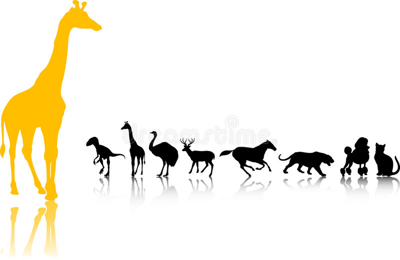 Download Animals Silhouette set stock vector. Image of isolated - 8676105