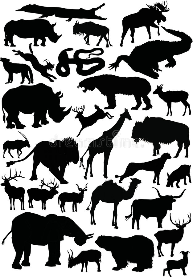 Download Animals Silhouettes Large Coll Stock Vector - Image: 5227159