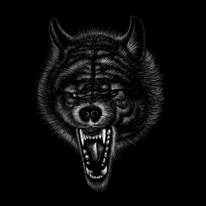 111animals,wolf, dog, old, drawing, vector, illustration, t shirt, design, isolated, jaws, teeth, motorcycle, graphic, painting, h. The Vector logo dog  or wolf royalty free stock images