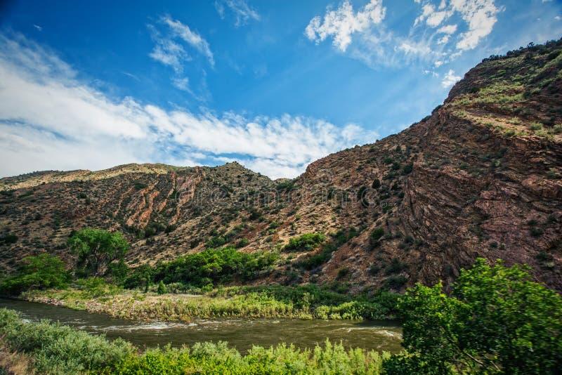 Animas flod och berg royaltyfri foto