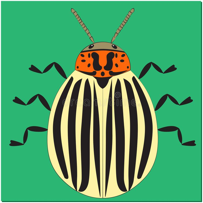Animated insect Colorado potato beetle stock illustration
