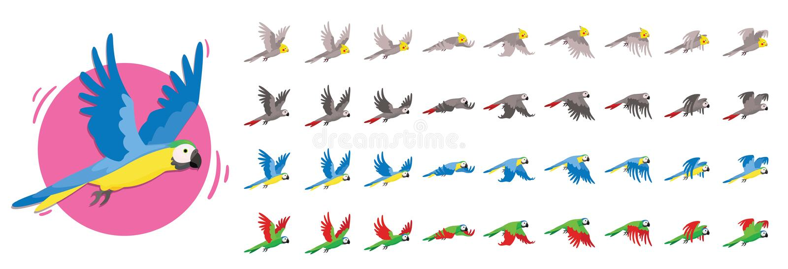 Animations the bird is flying. Parrot Animations. Set of Sprite bird flies. vector illustration